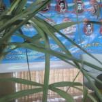گزارش تصویری از یادواره ۱۱ شهید سرافزار منطقه گیلاکجان،حسن سرا،دعویسرا،کیوان پشته و سالومحله