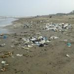 دریایی از زباله که در ساحل دریا پهلو گرفته اند+فیلم