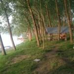 طبیعت زیبای صفرابسته و رودخانه سپیدرود+عکس