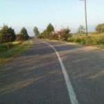 تصاویر زیبای تابستانی از مسیر دلنشین خیابان گیلاکجان معطر به عطر برنج و گل های رنگارنگ