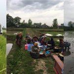 گزارش تصویری نشاکاری زمین شالی آقای محمدعلی علیمحمدی در گیلاکجان