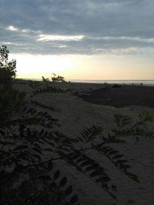 ساحل زیبای گیلاکجان