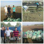 پاکسازی ساحل دل انگیز گیلاکجان از زباله توسط برخی از جوانان روستا