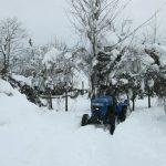 گزارش تصویری برف زمستان ۱۳۹۵ و برف روبی مسیرهای گیلاکجان